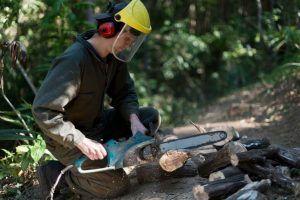 Use An Electric Chain Saw