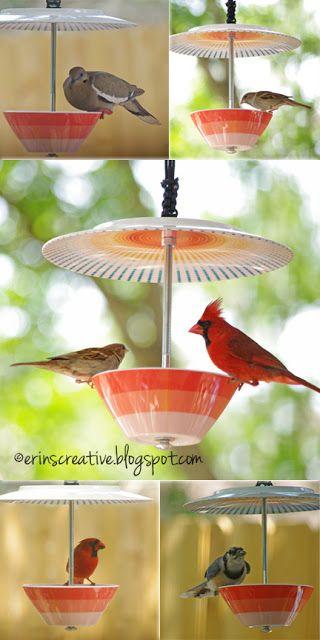 DIY Bird Feeder | Erin's Creative