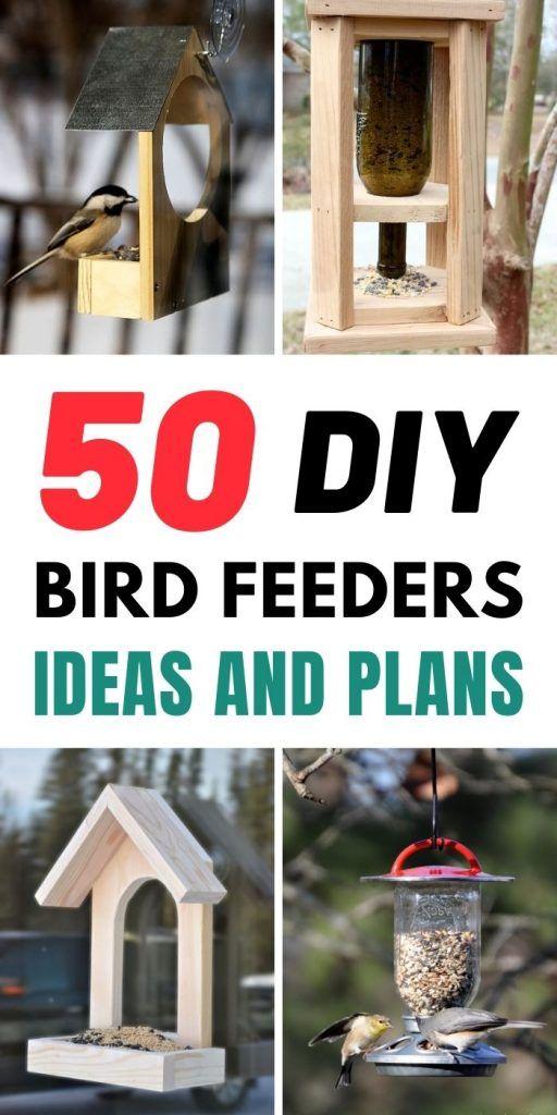 DIY Bird Feeders Ideas And Plans
