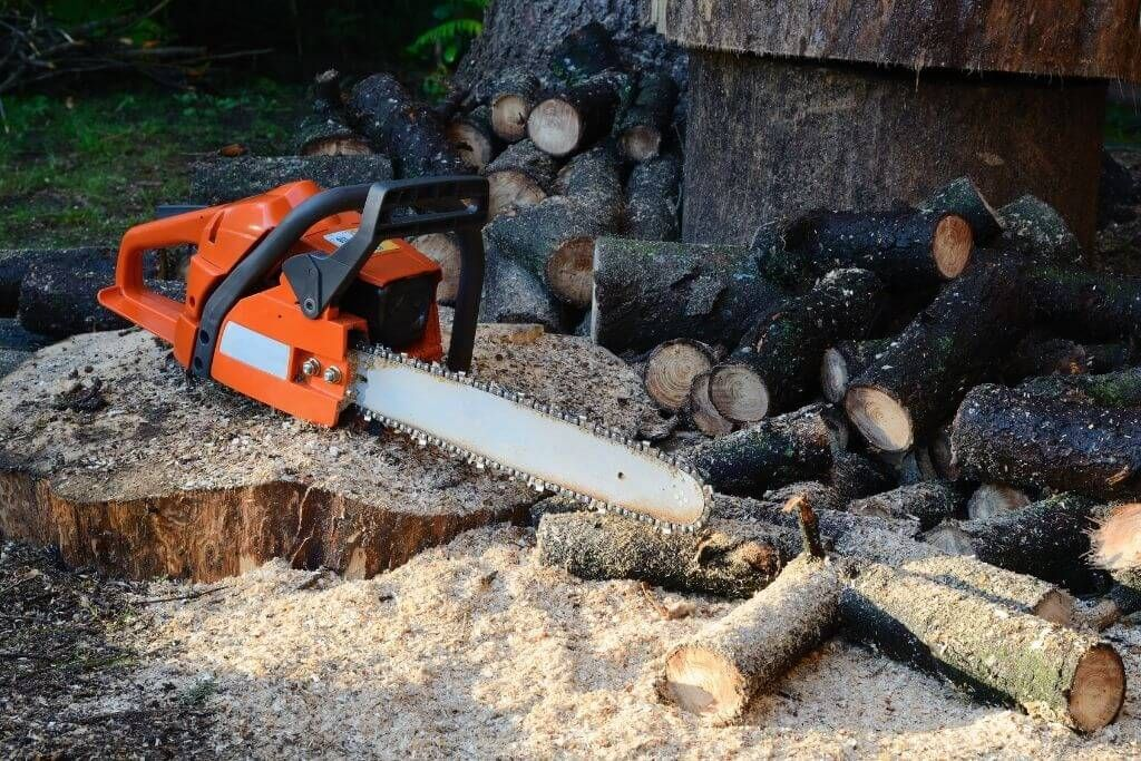 Best Chainsaw Reviews 2021 - The Ultimate Guide