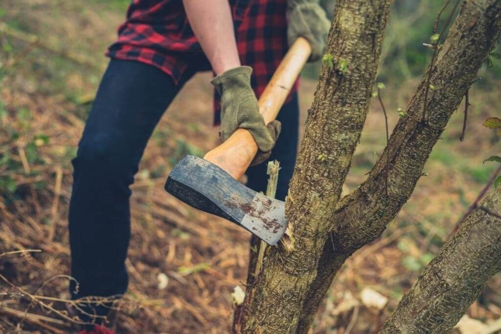 Benefits of A Felling Axe