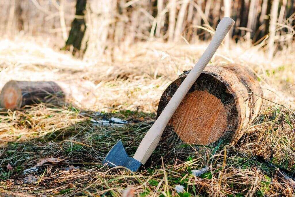 tree felling axe