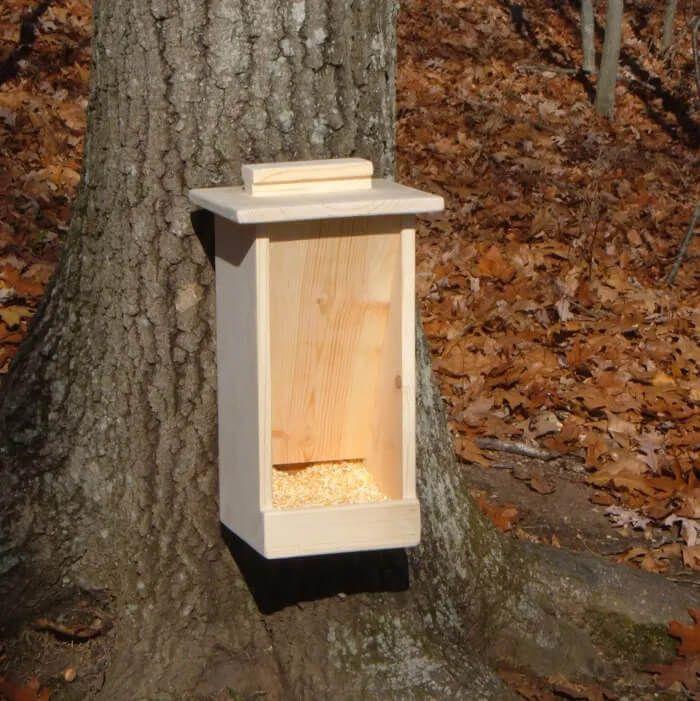DIY Wood Box Feeder